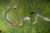 A verdant green river and wetland from above
