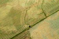 graphic patterns fill a hay field when seen from a drone
