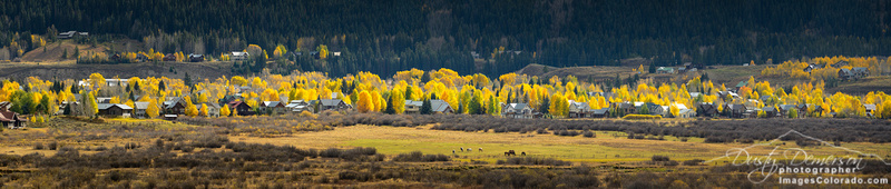 Crested Butte Cottonwoood Colors