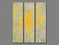 All That Glitters Triptych