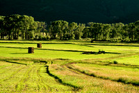 colorado stock photography - cutting hay near Ouray