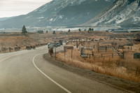 colorado stock photography - driving cattle