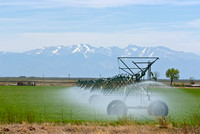 colorado stock photography - irrigation