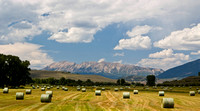 colorado stock photography - hay bales and mountains