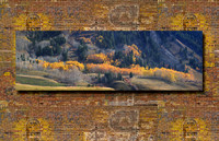 """The Base of the Butte"" 18 x 50"